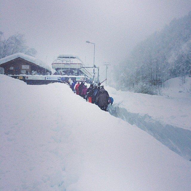 Limone Pte - Durante e dopo l'ultima nevicata del weekend | 18-19 Gen 2014