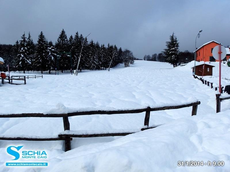 Schia, Neve fresca 31 Gen 2014