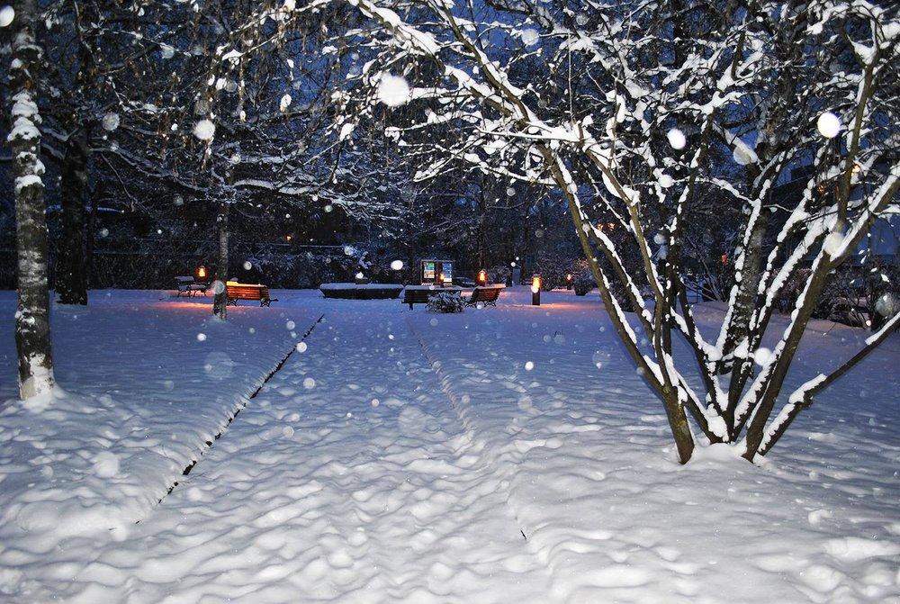 Val di Fiemme, Dolomites. Jan. 31, 2014