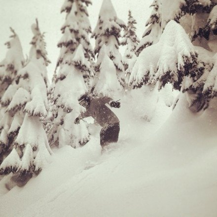 Alpy was all time on Sunday. Was able to be there early and got some amazing untouched POW slashes. Left by noon satisfied and beat the traffic home. These are the days we kill for.