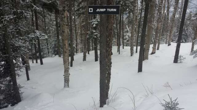 Some of the best conditions I have ever skied in! Every glade was open and in pristine condition