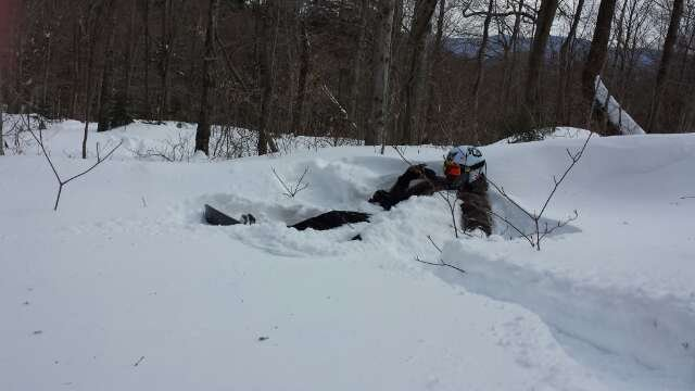 So much powder in the glades,  so much such an epic day Friday. Saturday will be epic
