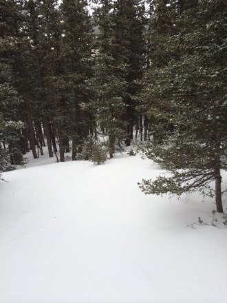 Was at Ski Apache on the 15th. Some new snow. The skiers left of the bowl was pretty icy, but the skiers right was pretty nice and the trees were great. Spring conditions, overall good.