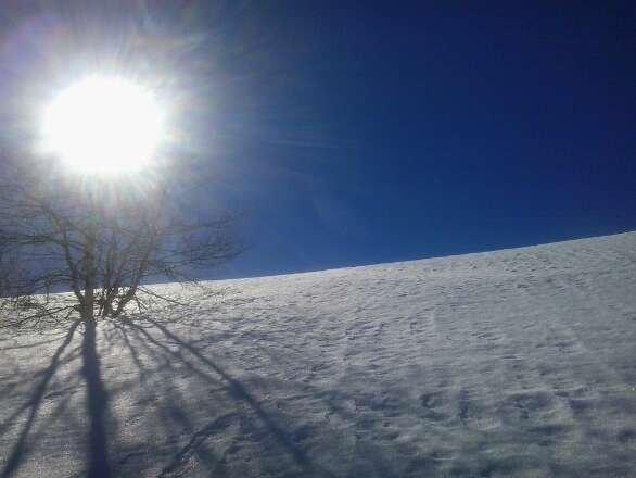 du soleil et de la neige de printemps . .