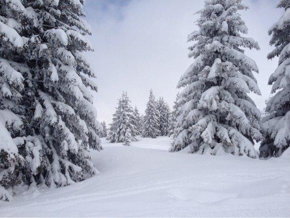 Les Houches, Chamonix, Monday March 24th