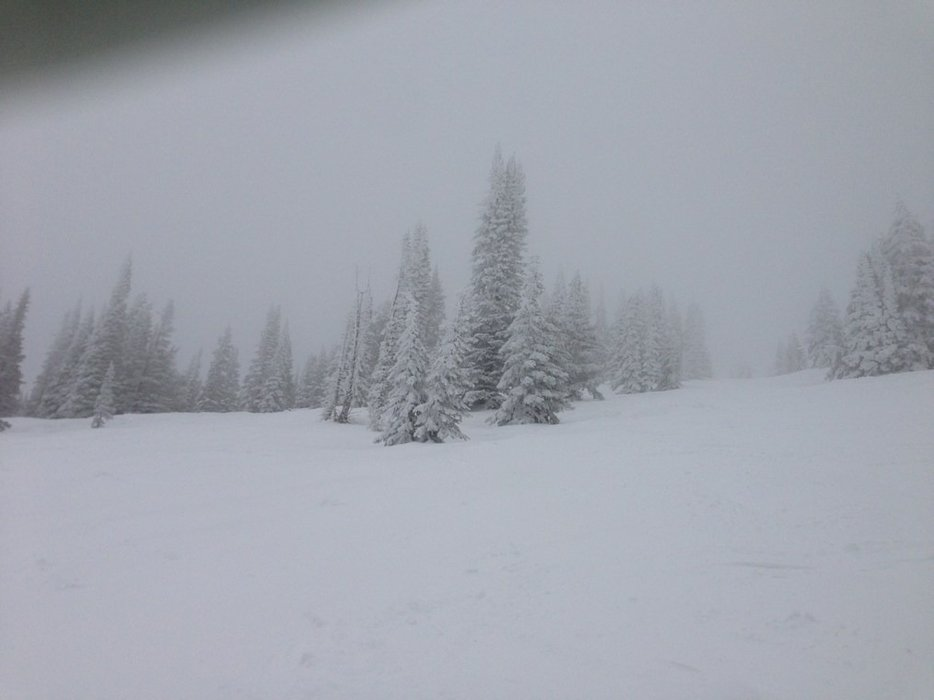 good snow in the upper mountain sunday with some fresh snow during day and more overnight. low visibility at times sunday but worth it to get the new snow. great weekend of skiing. thanks steamboat.