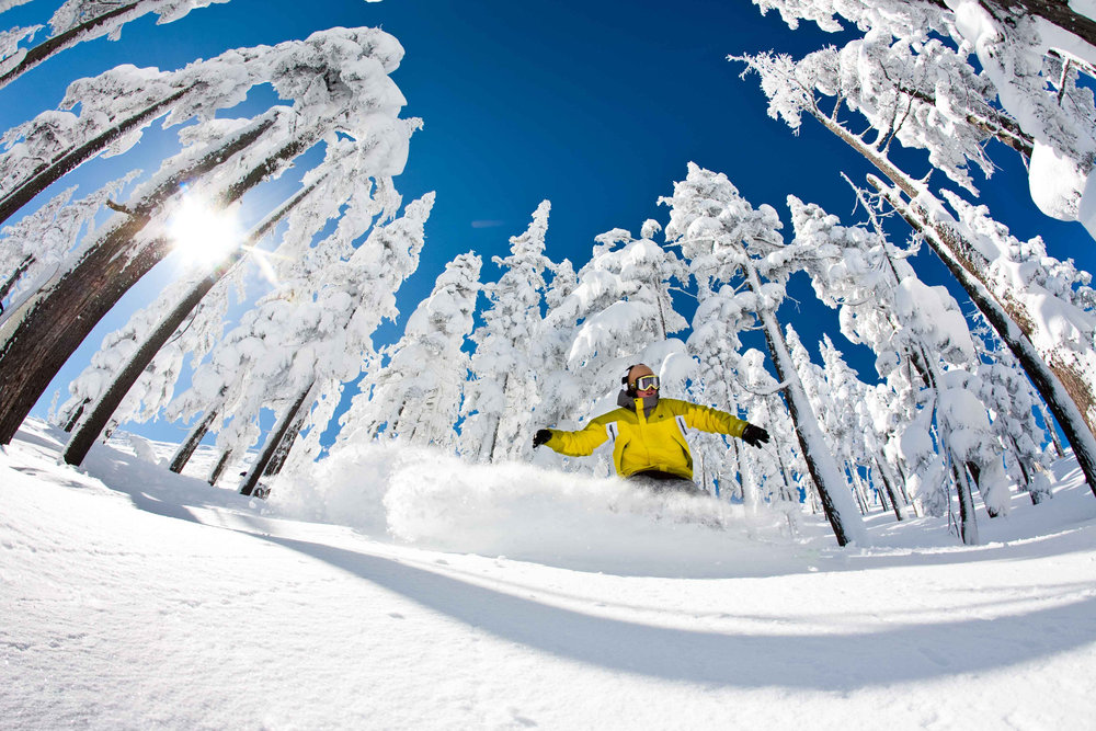 Bluebird powder day at Hoodoo. - © Tyler Roemer