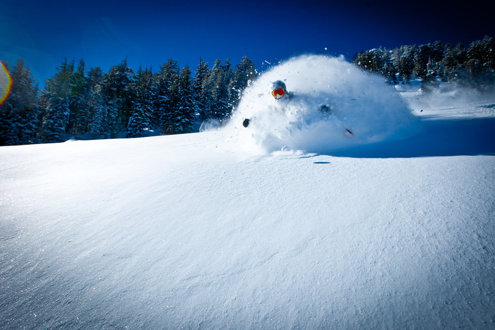 Abominable snow... skier?  - © Peter Morning