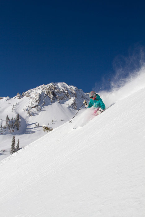 The powder at Snowbird is dry, light, effortless and glorious. - ©Snowbird Ski and Summer Resort