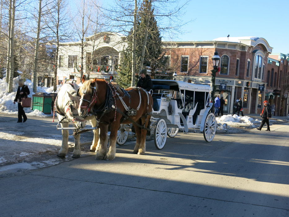Romantic ride on a horse-drawn carriage in Breckenridge