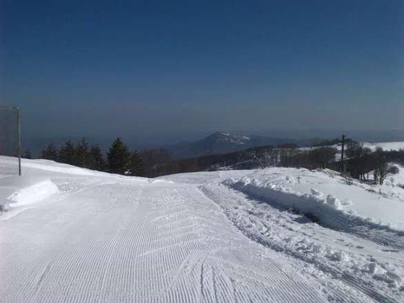 Schia - Neve di Marzo 2014
