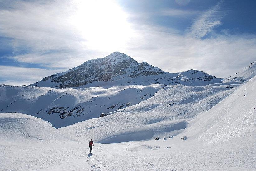 Der Gipfel glänzt in der Wintersonne - © Gerhard Dreher