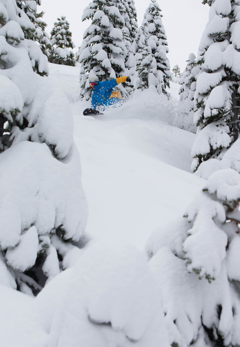 Powder and tree riding at Squaw Valley. - ©Jeff Engerbretson