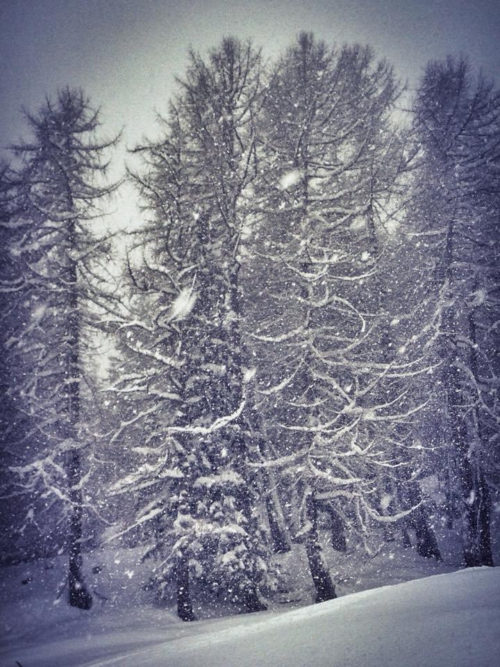 Courmayeur, 27 dic 2014 - © Courmayeur Mont Blanc (Facebook)