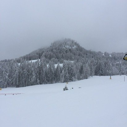 Absolutely amazing today! Fresh powder... Practically the first people down the mountain!
