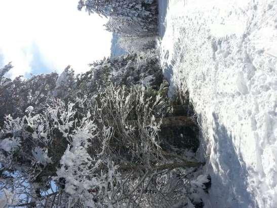 Superbes conditions de neige !