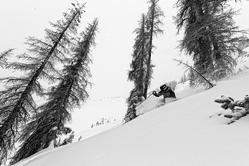 Bowls, chutes, trees, cliffs, Wolf Creek has it all. Skier, Sven Brunso. - © Liam Doran