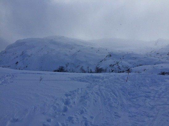 Helt konge dag! 20-30 cm fantastisk pudder + mye snø i det siste. Skiftende vær.