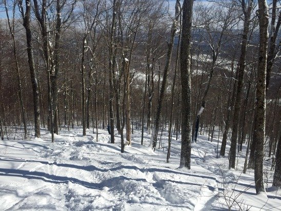"""12+"""" of powder lured me up to the Catskills today. The snow was heavier than last week's storm, and most of the trails were chopped up from a private event on Tuesday--we were disappointed it wasn't fresh as advertised. Woods were deep with fresh powder though!"""