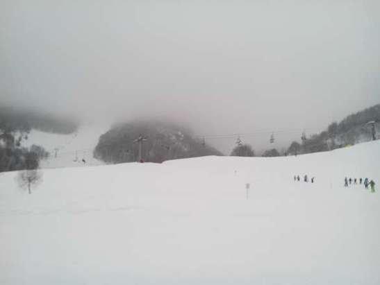 Neve splendida. In mattinata molta nebbia e quindi visibilità quasi nulla. Nel pomeriggio tempo migliore. Piste stupende. L unica pecca sono i prezzi:35€ per un giornaliero di mercoledì  mi sembra esagerato