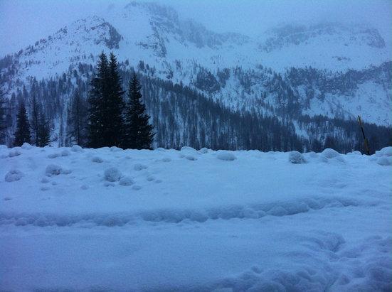 Falcade - Passo San Pellegrino - Venerdì 27 ottima neve dopo 40cm di neve fresca   - © iZepad
