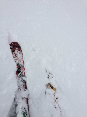 Marmot Basin - Good day of snow today a bit chunky. still had fun - © Patti's iPhone
