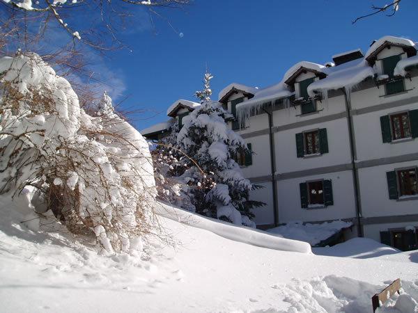 Campigna Monte Falco