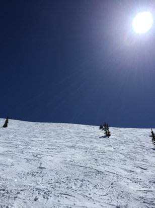 Grand Targhee Resort - Plentiful sun, warm air. Soft snow. Must have found heaven.  - © SkiBum