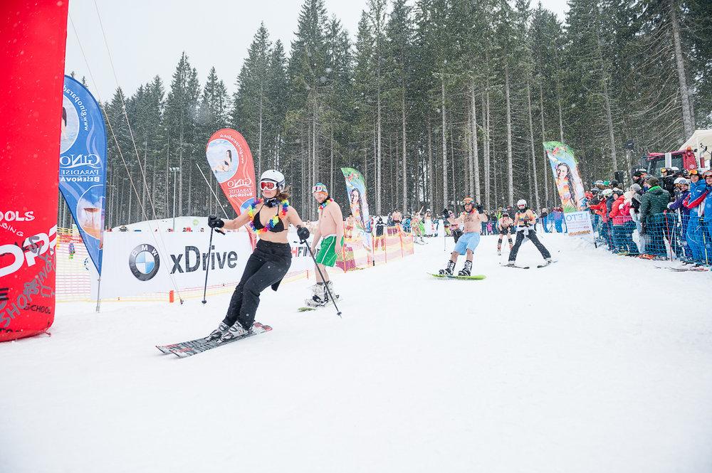 Bikini Skiing 2015 Jasná