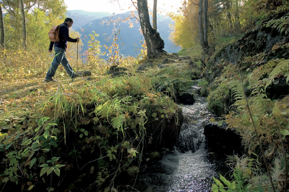 Switzerland. get natural. .Hiking along the Suonen - artificial aquaeducts - near Nendaz, Canton Valais. ..Schweiz. ganz natuerlich. .Wandern entlang den Suonen bei Nendaz, Kanton Wallis. ..Suisse. tout naturellement. .Randonnee le long d'un bisse pres de Nendaz, canton du Valais. ..Copyrig