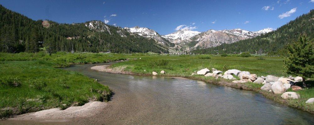 Stream at Pana Crop Creek, Squaw Valley