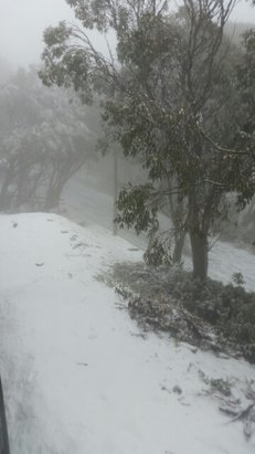 Falls Creek Alpine Resort - Fresh snow fell overnight, finally! Woo hoo! - © scullywags.pk