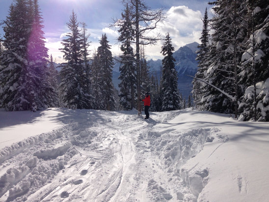 Lake Louise - Firsthand Ski Report - ©Adam's iPhone