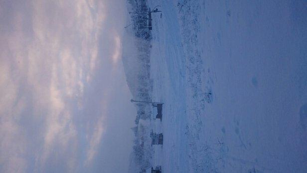 Furedalen - Kvamskogen - furudalen nede snøkanoner - © Linda