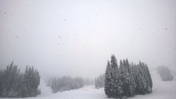 Sun Peaks - Not the clearest day, but continues fresh snow. Powder galore!!  - © Dewi's iPhone