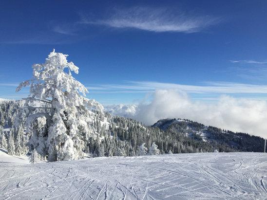 Bogus Basin - Best ski day of the season so far!!  - © iPhone