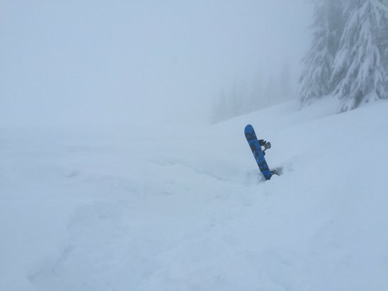 Cypress Mountain - Powder but low vis. You choose! - © bh