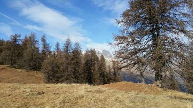 Puy Saint Vincent - Pas de neige  - © fredericsemidei@gmail.co