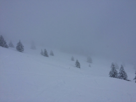 Ski Apache - Lots of snow!!