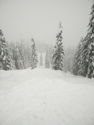 The Summit at Snoqualmie - lovely day. not the lightest, but great fun. coverage is amazing. 