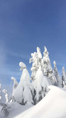Stevens Pass Resort - [! skireport_firsthandpost_pagetitle ] - © Randall