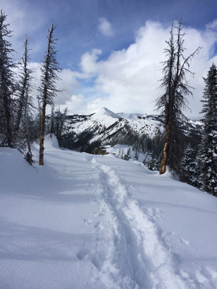 Wolf Creek Ski Area - Deep powder on 1.25.16-- an amazing day with great conditions!!