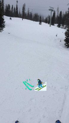 Wolf Creek Ski Area - Great ski conditions  - © iPhone (3)