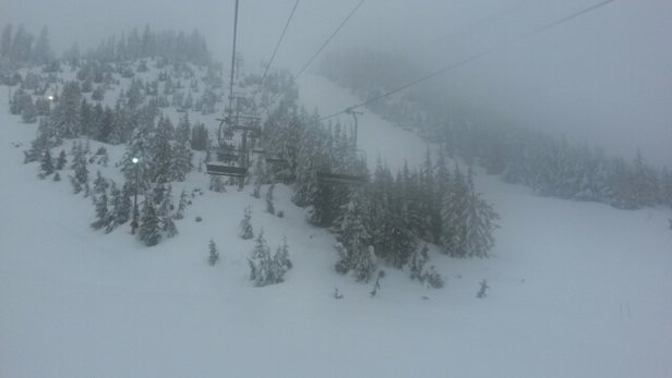 Cypress Mountain - visibility was poor this morning. afternoon visibility was excellent and snow was even better. turned out to be one of the best days I've had up there and it's still snowing - © the jenkster