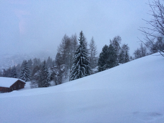 Verbier - 30cm of new powder this morning! - © mathieu's iPhone