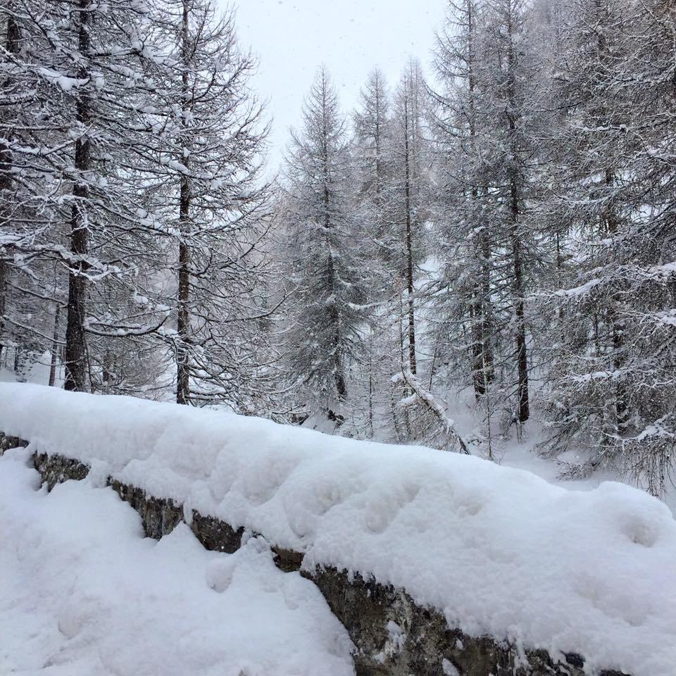 Viel Schnee gab es im italienischen Livigno - © Livigno Mottolino Fun Mountain Facebook