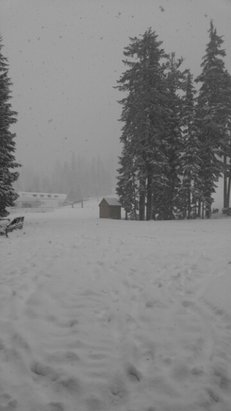 Willamette Pass - it's coming down. - © Buck Rogers