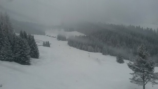 Laax - It's so fluffy we could die - © stgilinm