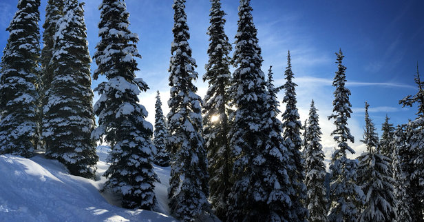 Stevens Pass Resort - Yesterday was perfect.  - © Michaels Iphone