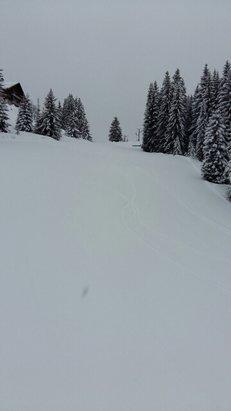 La Clusaz - 20 à 30cm de neige fraîche tombée dans la nuit... du bonheur  - © alexandre